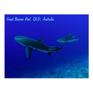 Carte Postale Paires de la mer de corail de la Grande barrière