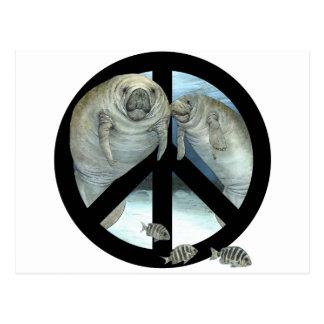 Carte Postale paix de lamantin