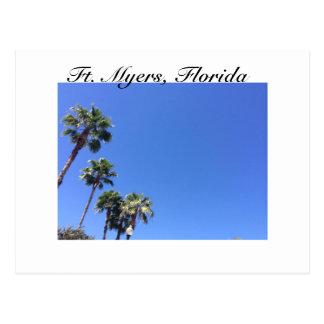 Carte Postale Palmiers et ciel bleu - Fort Myers