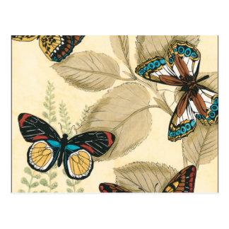 Carte Postale Papillons glissant au-dessus du feuille