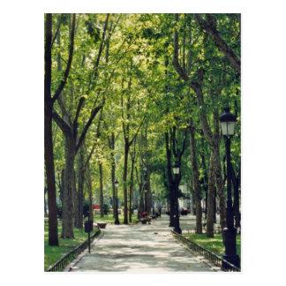 Carte Postale Parc de Madrid