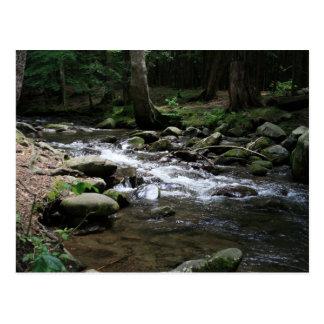 Carte Postale Parc national de Great Smoky Mountains