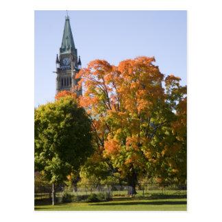 Carte Postale Parc près du bâtiment du Parlement à Ottawa,