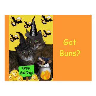 Carte Postale Partie féline de Halloween