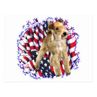 Carte Postale Patriote de région des lacs Terrier