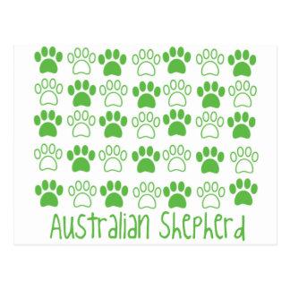 Carte Postale Patte par le berger d'Australien de patte