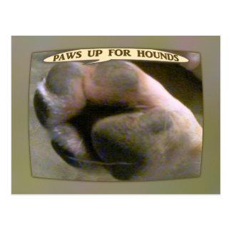 Carte Postale Pattes pour des chiens de chasse
