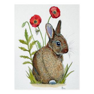 Carte Postale 'Pavot Bunny