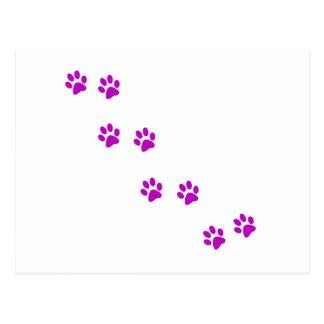 Carte Postale pawprints pourpres mignons