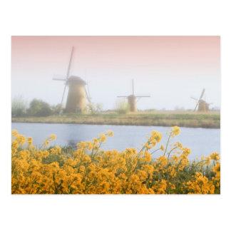 Carte Postale Pays-Bas, Kinderdijk. Moulins à vent à côté de 2