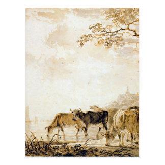 Carte Postale Paysage avec des vaches par Jacob van Strij