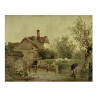 Carte Postale Paysage avec un cottage