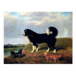 Carte Postale Peinture d'animaux familiers de Norfolk Terrier