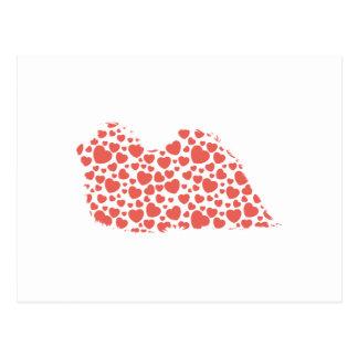 Carte Postale Pekingese