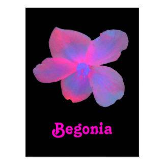 Carte postale personnalisable de bégonia