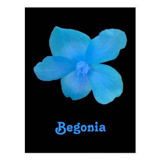 Carte postale personnalisable de bégonia bleu
