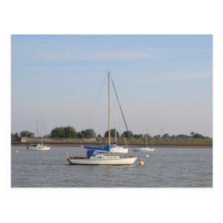 Carte Postale Petits yachts