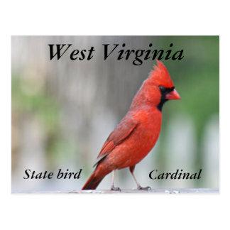 Carte Postale Photo cardinale du nord