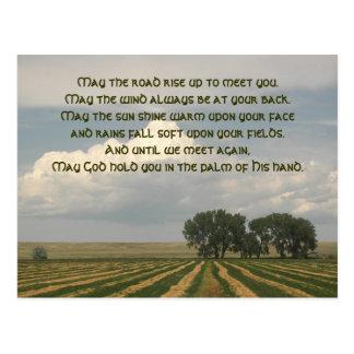 Carte Postale Photo irlandaise de terres cultivables de