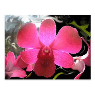 Carte Postale Photo numérique d'orchidée pourpre magenta