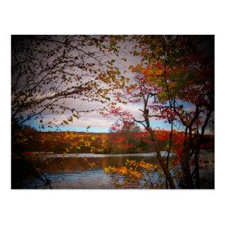 Carte Postale PICS de nature