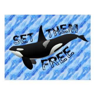 Carte Postale Placez-les librement orque