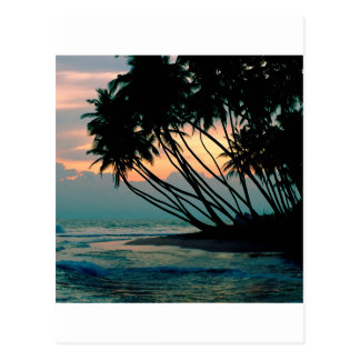Carte Postale Plage Colombo Sri Lanka