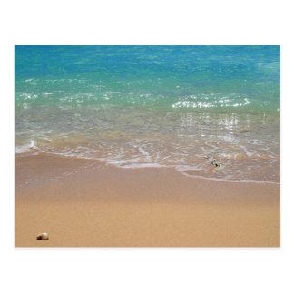 Carte Postale Plage tropicale - Waikiki, Oahu, Hawaï