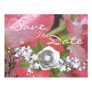 Carte Postale Pluie rose