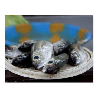 Carte Postale Poisson frais sur la poissonnerie Mercado de