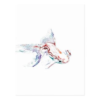 Carte Postale Poissons d'arc-en-ciel/poisson rouge/Koi