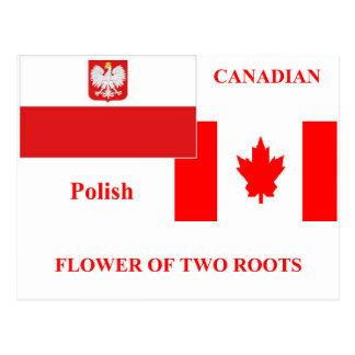 Carte Postale Poli-canadien