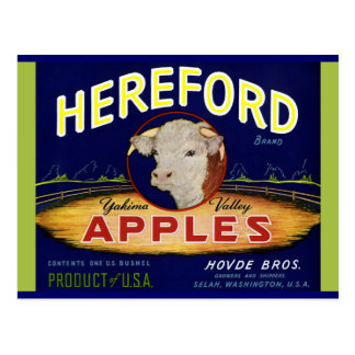 Carte Postale Pommes de Hereford Washington