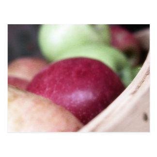 Carte Postale Pommes organiques fraîches