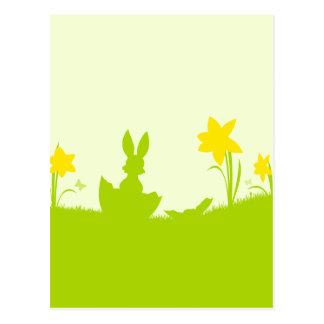 Carte Postale Pré lapin de Pâques narcisses