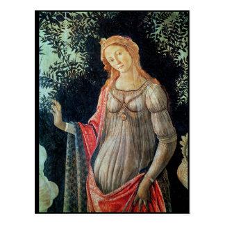Carte Postale Primavera, petit groupe de Vénus, c.1478