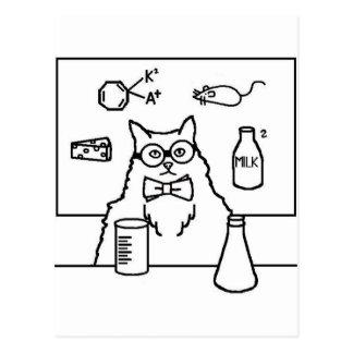 Carte Postale Professeur Cat