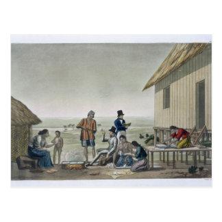 Carte Postale Professions des personnes d'Agagna, îles