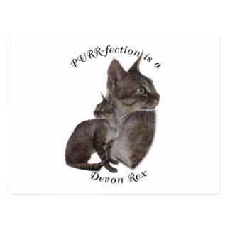 Carte Postale PURRfection Devon Rex
