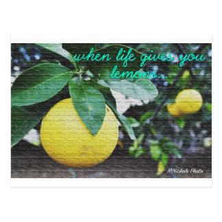 Carte Postale Quand la vie vous donne des citrons