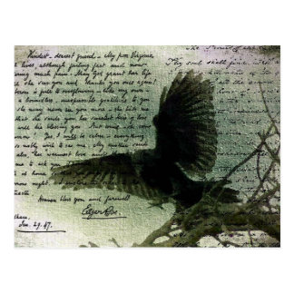 Carte Postale Raven 3