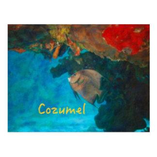 Carte Postale Récif coralien de Cozumel