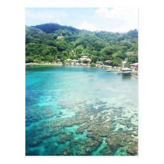 Carte Postale Récif coralien de Grand Cayman