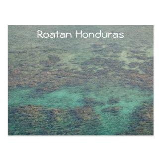 Carte Postale Récif coralien de Haunduras