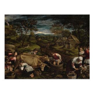 Carte Postale Récolte, 1576