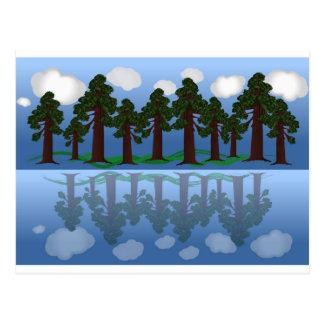 Carte Postale réflexion d'arbre