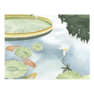 Carte Postale Réflexion d'étang de Koi avec des poissons et des