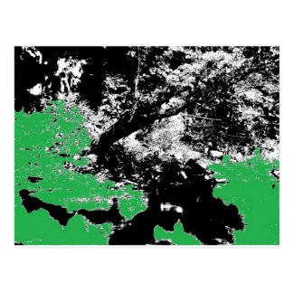 Carte Postale Réflexion verte avec l'arbre