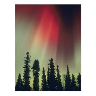 Carte Postale Région des Etats-Unis, Fairbanks, Alaska central,