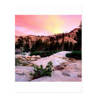 Carte Postale Région sauvage Eldorado de désolation de forêt